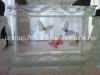 bar de gheata fluturi
