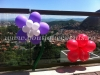 flori baloane